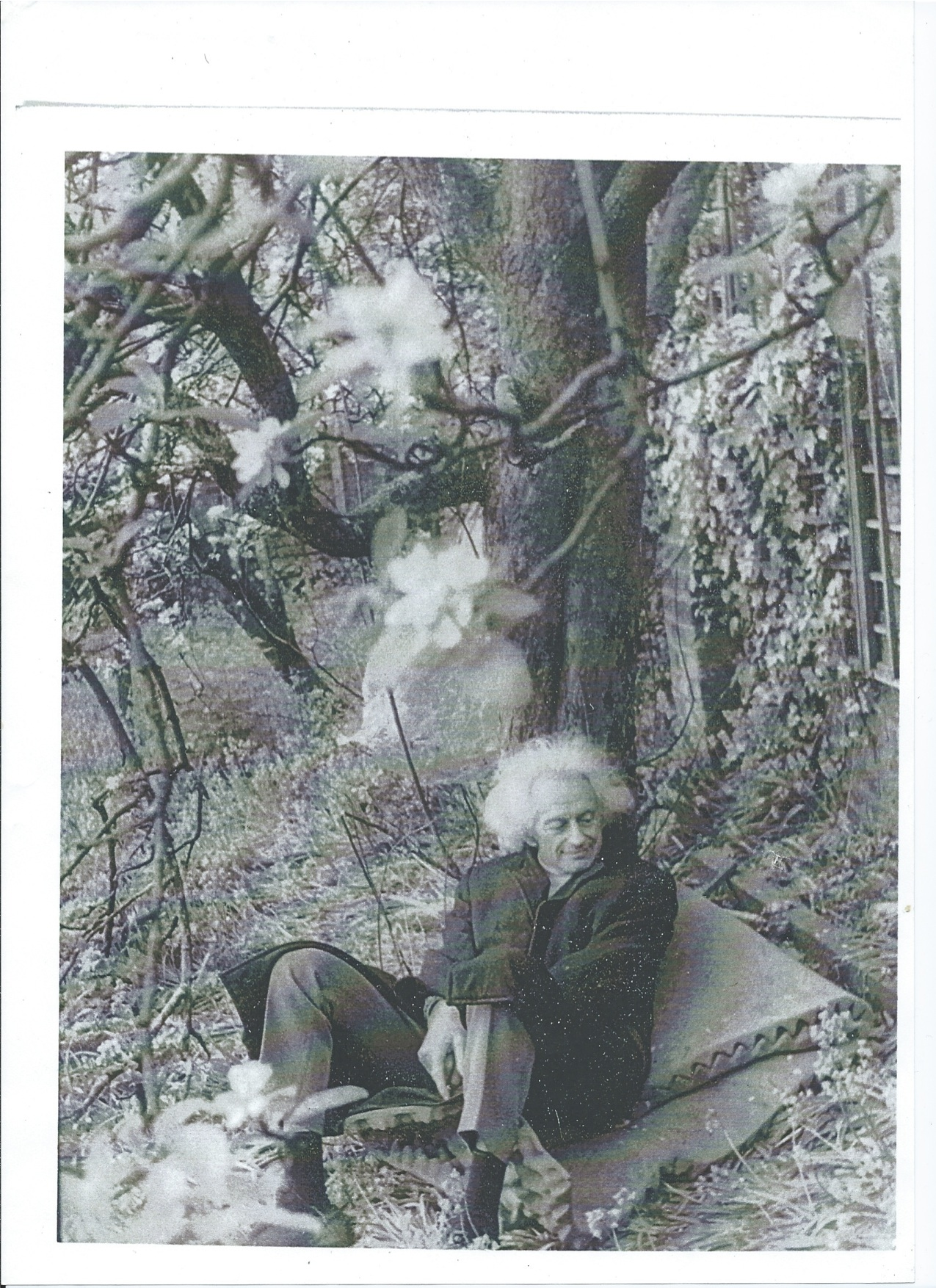 Herbert Frohlich And Physicists Fanchon Frohlich